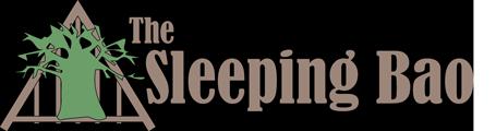 The Sleeping Bao